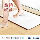 Dr.Limi 超吸水魔力珪藻土地墊-大