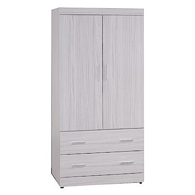 綠活居 特斯拉2.7尺二抽衣櫃/收納櫃(二色+穿衣鏡)-80x58x176cm-免組