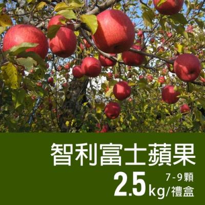 築地一番鮮-特大智利富士蘋果2盒(2.5kg±10%/禮盒/7-9顆)