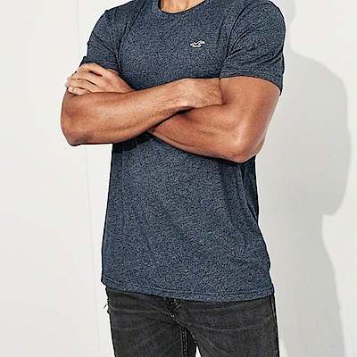 Hollister HCO  短袖 T恤 藍色 0860