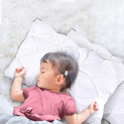 Hilton 希爾頓 五星級御用 白鵝羽毛輕柔立體枕買一送一