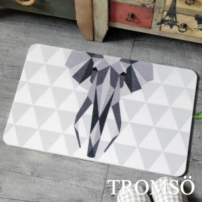 TROMSO珪藻土厚實吸水地墊 -幾何灰象