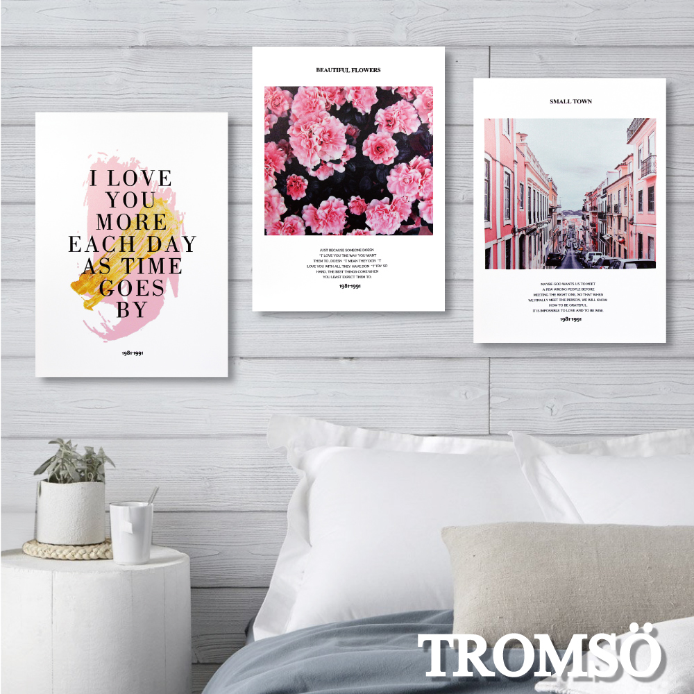 TROMSO 時尚無框畫-粉紅優雅