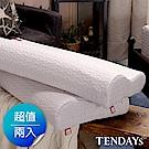 TENDAYS 柔織紓壓枕 2入