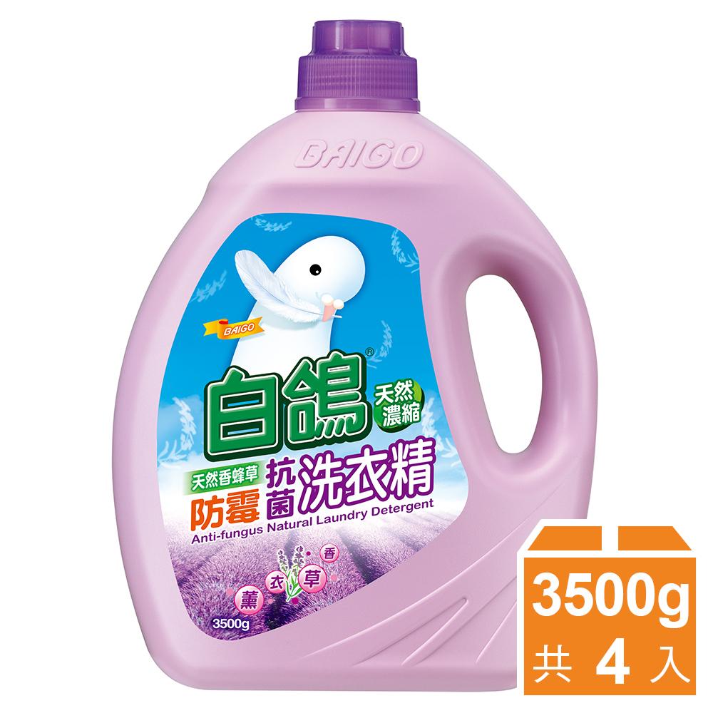 白鴿 天然濃縮防霉洗衣精-天然香蜂草3500gx4入/箱