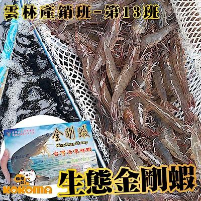 (任選) 極鮮配 雲林產銷班第13班-生態金剛蝦 250g%(約20-25隻)