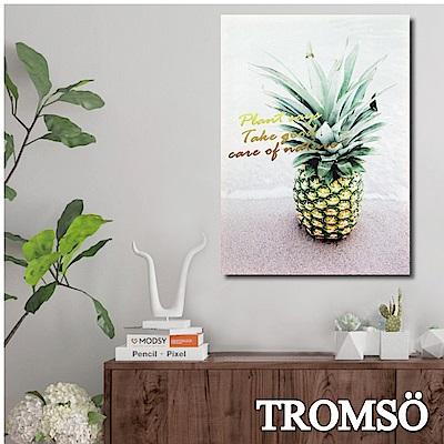 TROMSO 時尚無框畫-北歐菠蘿 W272