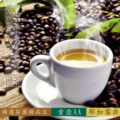 【屋告好喝】(現烘)精品咖啡豆組-肯亞AA/耶加雪非