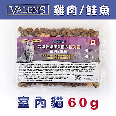 【VALENS威倫】室內貓-冷凍乾燥原食配方-雞肉/鮭魚 外出包60g
