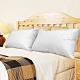 凱蕾絲帝-台灣製造-台灣製造-50/50貴族級立體純棉羽絨枕(1入) product thumbnail 1