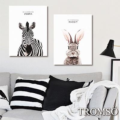 TROMSO 時尚無框畫-小萌兔斑馬