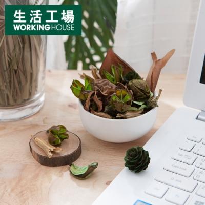 【獨家_滿888送櫸木手拿鏡-生活工場】Elegant綠茶乾燥花65g