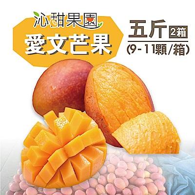 沁甜果園SSN 屏東枋山愛文芒果5台斤(9-11粒/箱,共2箱)