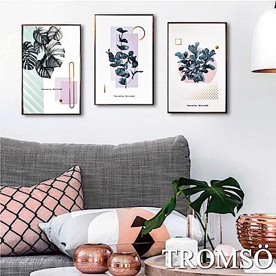 TROMSO 北歐生活版畫有框畫-美好綠葉WA56(三幅一組)