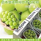 【天天果園】日本長野溫室麝香葡萄禮盒1串(每串約550g)