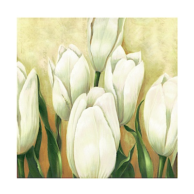 美學365 單聯 時尚無框畫掛畫-白色花卉 30x30cm