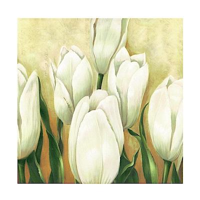 美學365 單聯 時尚無框畫掛畫-白色花卉 50x50cm