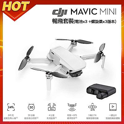 DJI Mavic MINI 摺疊航拍機 - 暢飛套裝版 (聯強公司貨)