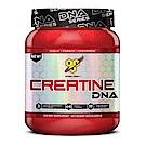 BSN CREATINE 肌酸 309公克