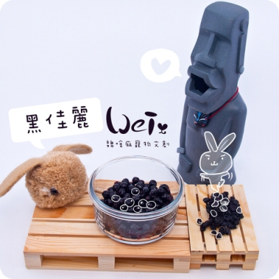 魏啥麻兔鼠寵物手工零食 - 黑佳麗乾(黑醋栗) 10g 寵物零食/點心