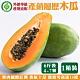 【果農直配】產銷履歷外銷等級木瓜6斤(約4-7顆) product thumbnail 1