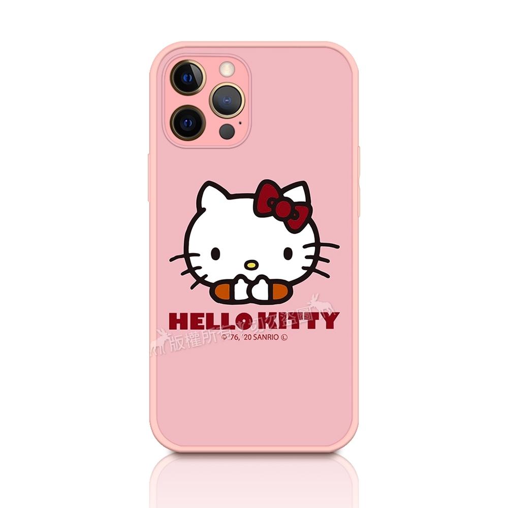 正版授權 Hello Kitty 凱蒂貓 iPhone 12 Pro Max 6.7吋 粉嫩防滑保護殼(經典大頭)