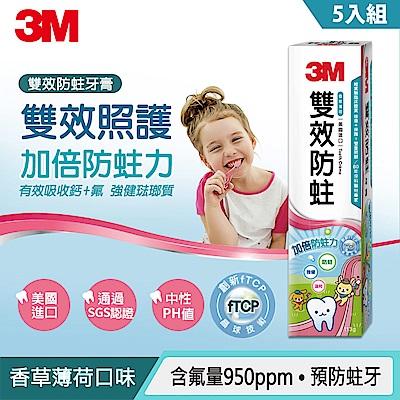 3M 雙效防蛀護齒牙膏 5入家庭超值組