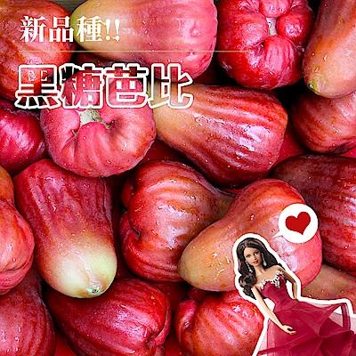 【鮮果日誌】蓮霧界的LV 黑糖芭比 (2.5台斤精美禮盒裝)