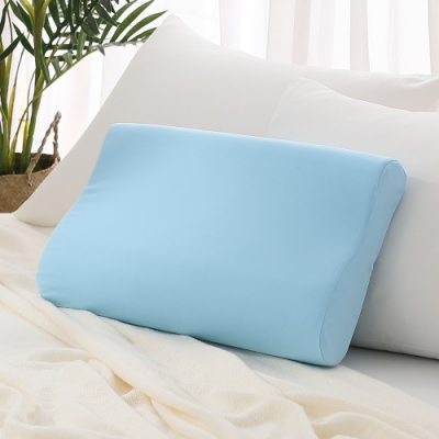 LAMINA 防蹣抗菌四季恆溫記憶枕