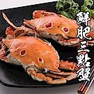 【海鮮王】特選鮮肥三點蟹 5隻組(淨重100-150g/隻)