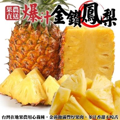 【果農直配】嚴選屏東17號金鑽鳳梨15斤(約5-8顆)