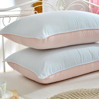 義大利La Belle 天然抑菌除臭漾彩雙色咖啡枕
