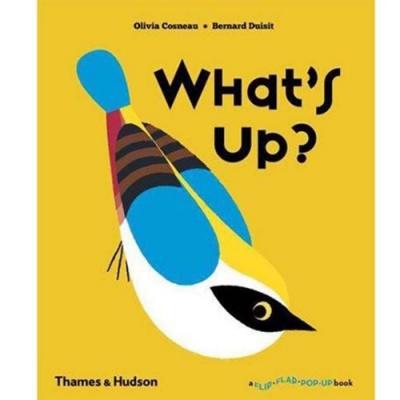 What s Up? 小鳥小鳥,你在做什麼?趣味操作書