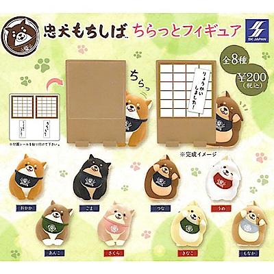 全套8款【日本正版】忠犬麻糬柴 偷偷瞄 公仔 扭蛋 轉蛋 麻糬柴犬 807652