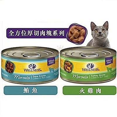 WELLNESS寵物健康-全方位厚切肉塊主食罐-5.5OZ(156g) 24罐組