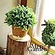 Meric Garden  Zakka風格高仿真植物景觀盆栽(綠半球M) product thumbnail 1