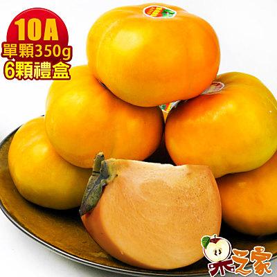 果之家 產地特選高山摩天嶺甜柿禮盒6顆禮盒(10A,單顆9-10兩)