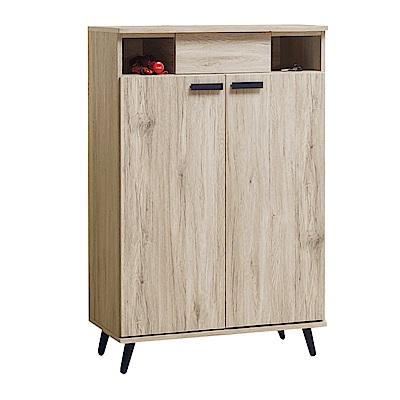 綠活居 比卡現代2.7尺二門單抽鞋櫃/玄關櫃-81x39x123cm免組
