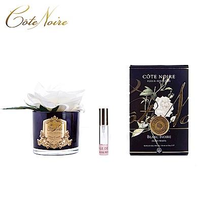 法國 CoteNoire 蔻特蘭 大朵象牙白玫瑰香氛花黑瓶