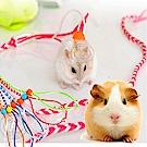 dyy》寵物鼠 松鼠 小動物牽繩140cm(顏色隨機出貨)