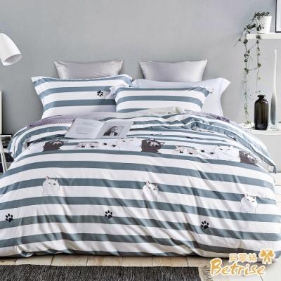 Betrise害羞的貓  雙人-3M專利天絲吸濕排汗四件式兩用被床包組