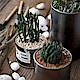 Meric Garden 創意北歐ins風鐵罐/盆栽收納罐_無蓋黑色2入組(大+小) product thumbnail 1