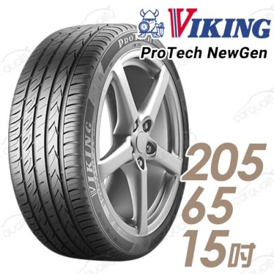 【維京】PTNG 濕地輪胎_送專業安裝_單入組_205/65/15 94V(PTNG)
