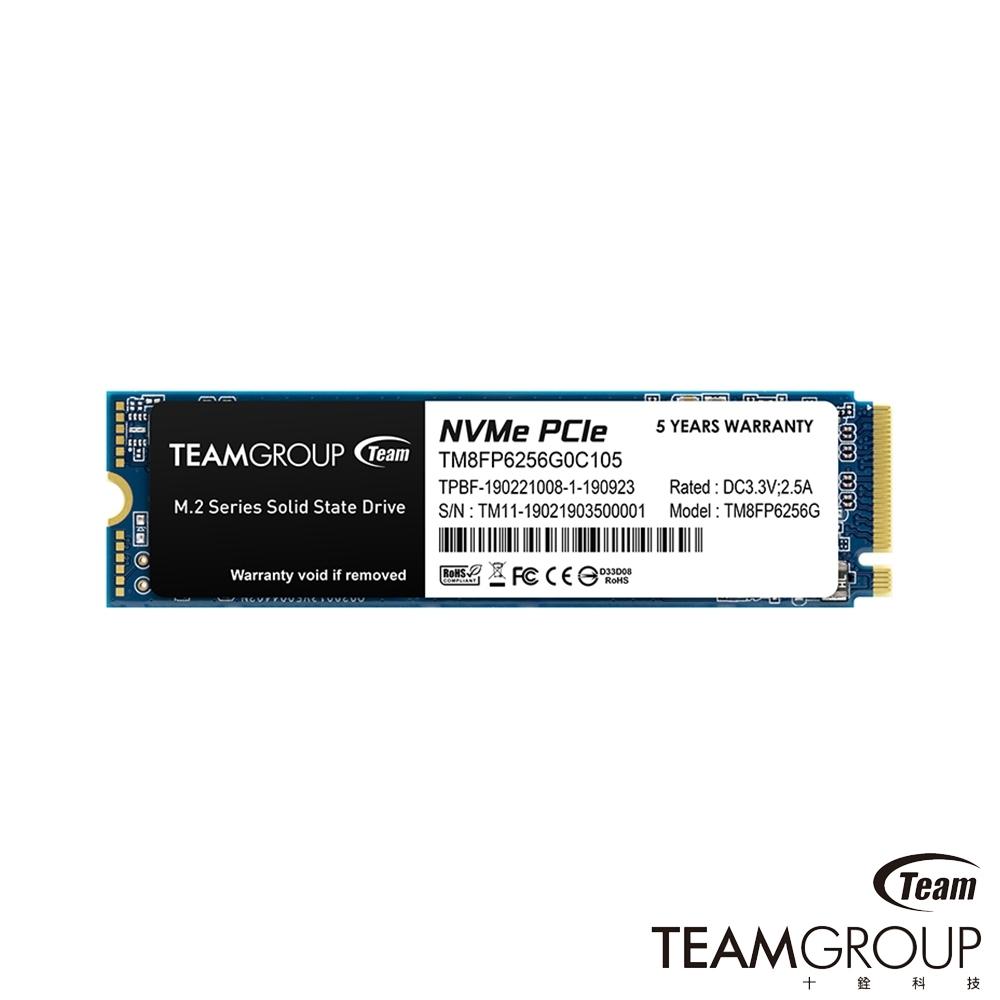 Team十銓 MP33 256GB M.2 NVMe PCIe 固態硬碟