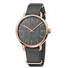 Calvin Klein CK超然系列腕錶(K7B216P3)45mm加贈米色帆布錶帶