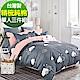 9 Design 漫步雲端 單人三件組 100%精梳棉 台灣製 床包被套純棉三件式 product thumbnail 1