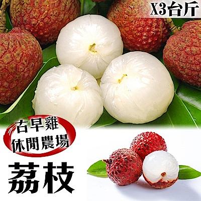 【農民直配】古早香黑葉荔枝(去枝去葉)3斤x2箱