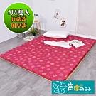 窩床的日子-加厚款(高密度8cm床墊) 高密度聚酯纖維棉 透氣棉床墊(雙人)