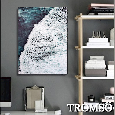 TROMSO 時尚無框畫-藍海國度 W275