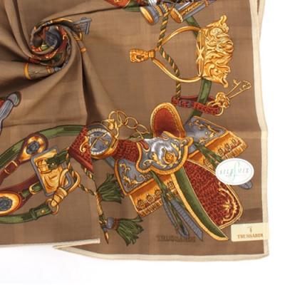 TRUSSARDI 皇家回憶錄混棉帕巾(咖啡色)
